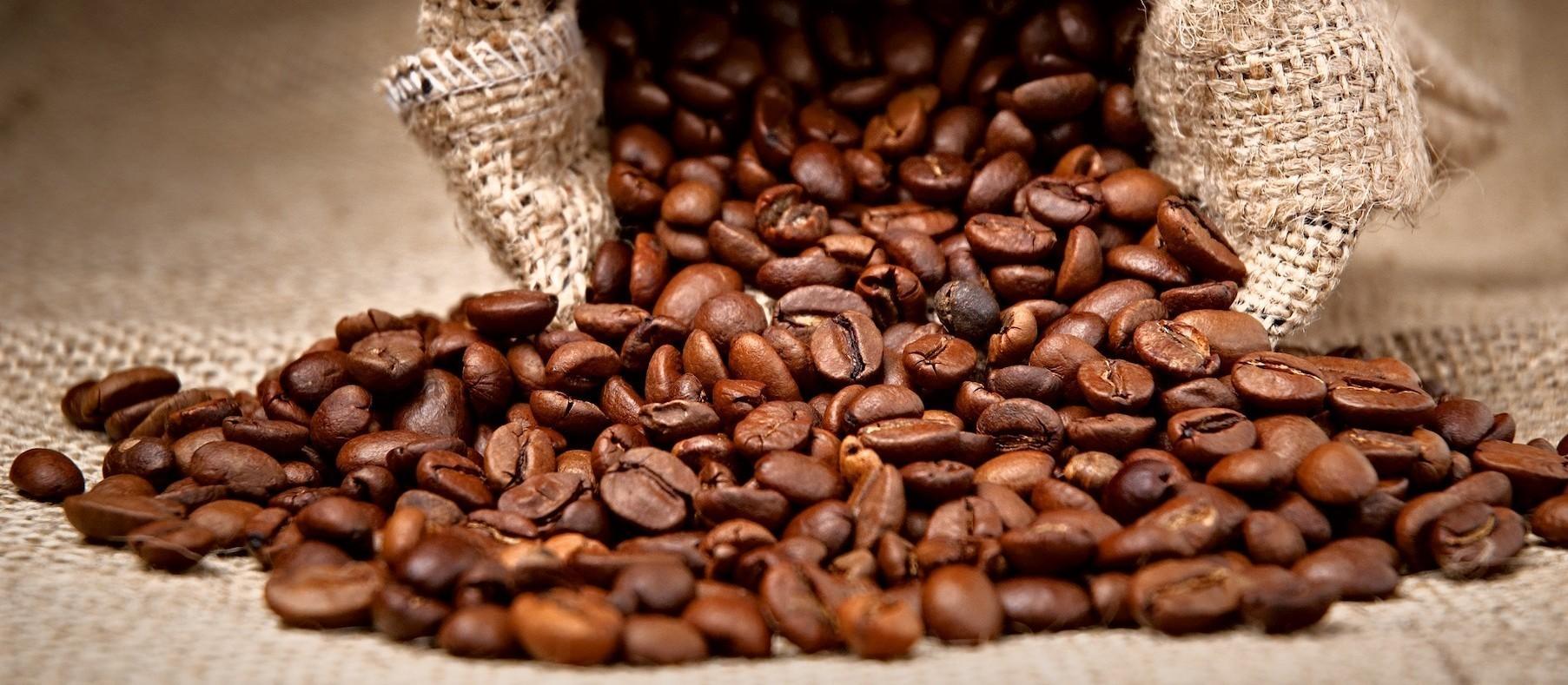 Café custa R$ 416 a saca de 60 Kg em Maringá