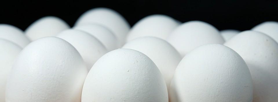 Preço do ovo cai 30%