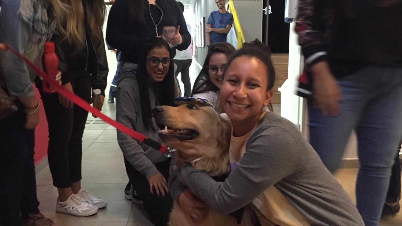 No Dia Internacional do Abraço cão terapeuta visita estudantes