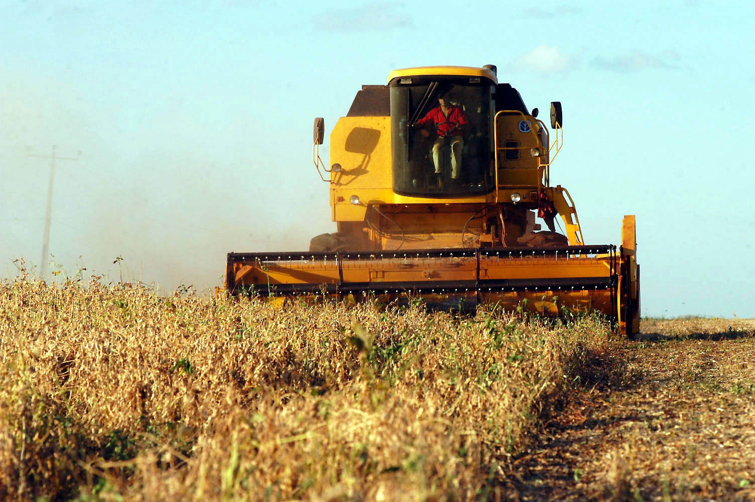 Paraná ainda patina na colheita da soja