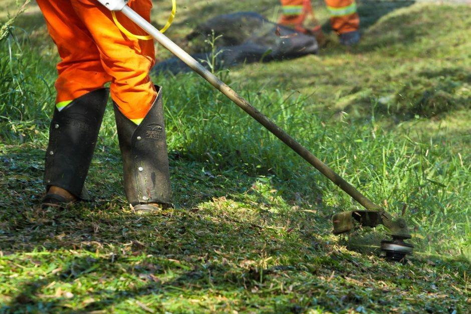 OSM pede impugnação da licitação de roçadas