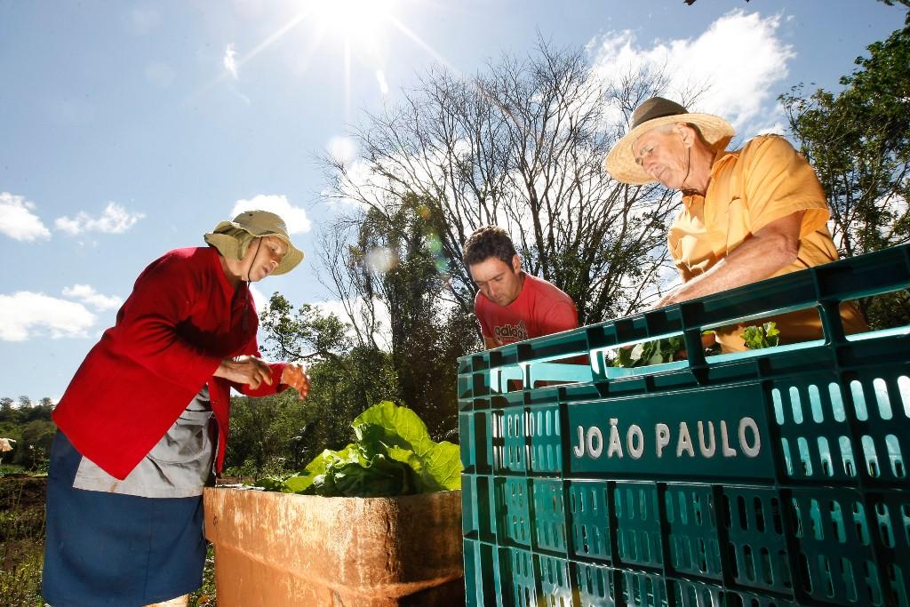 Por que a agricultura familiar é tão importante?