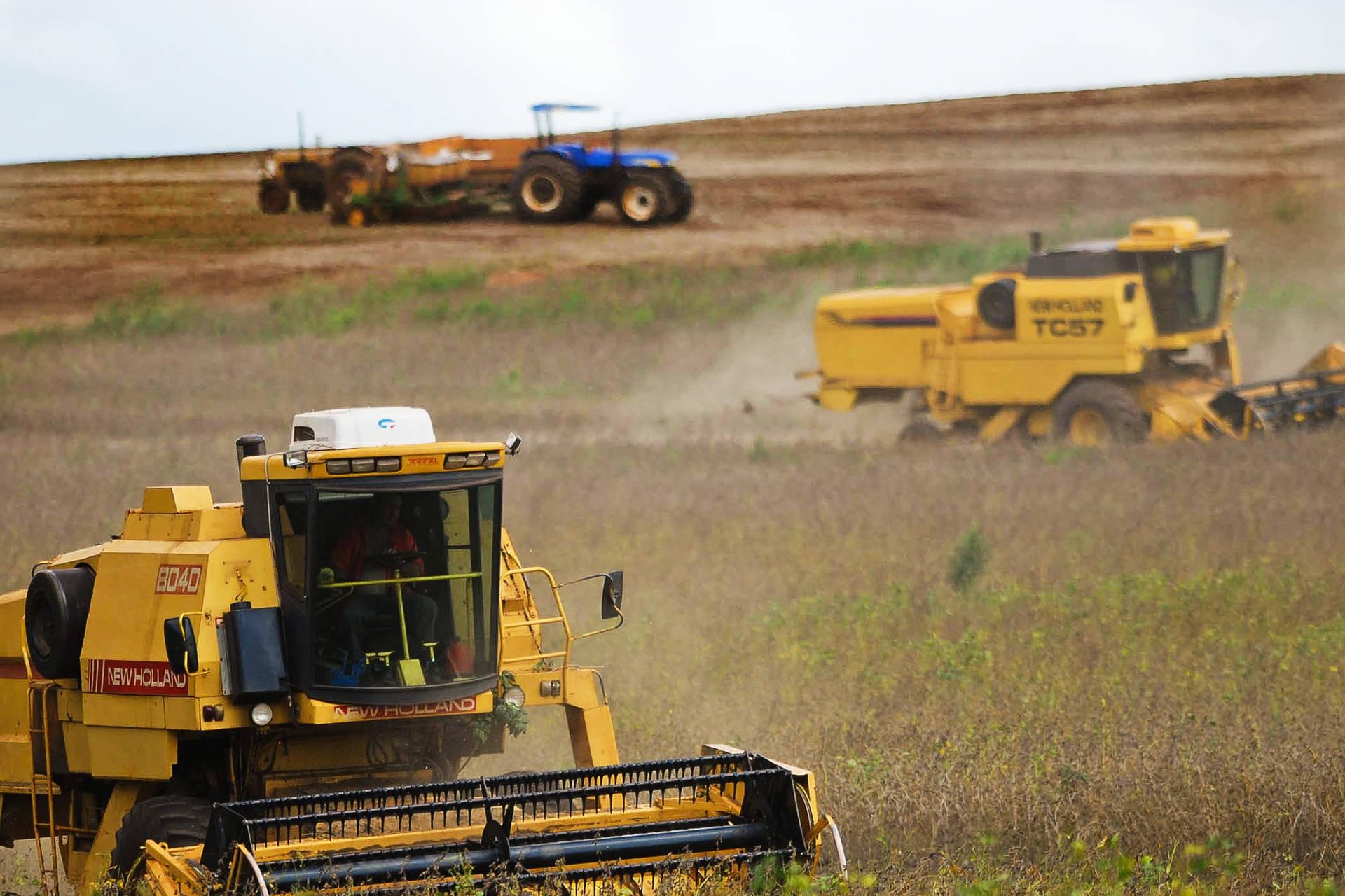 Paraná já colheu 98% da área de soja