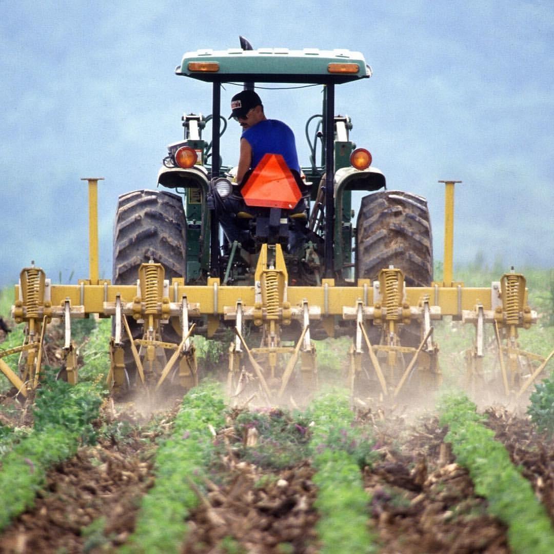 Produtores rurais poderão ter o CAD/PRO cancelado a partir de 11 de julho