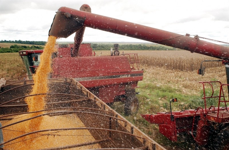 Sem Lei Kandir, produção de soja teria queda de 34%, aponta estudo