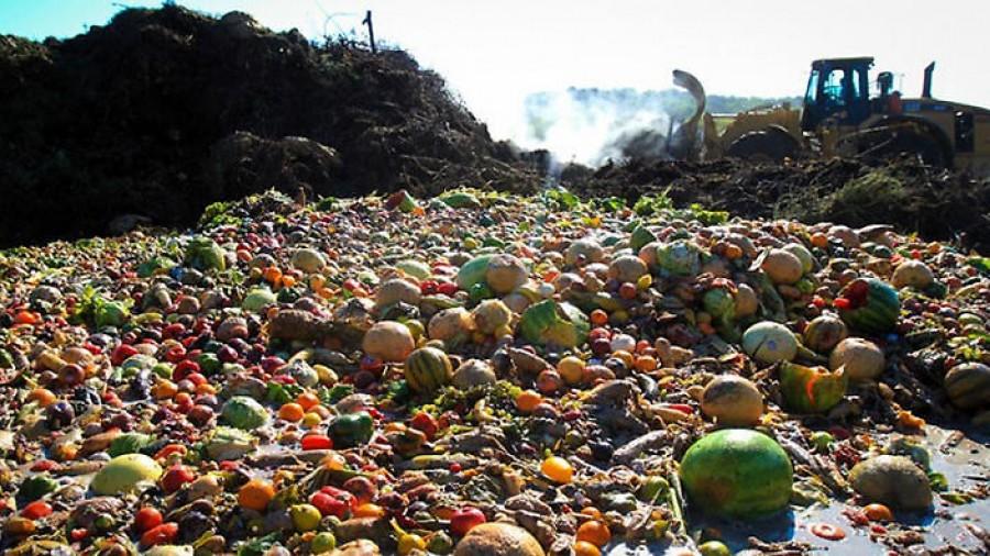Novo projeto deve reduzir desperdício de alimentos no Paraná