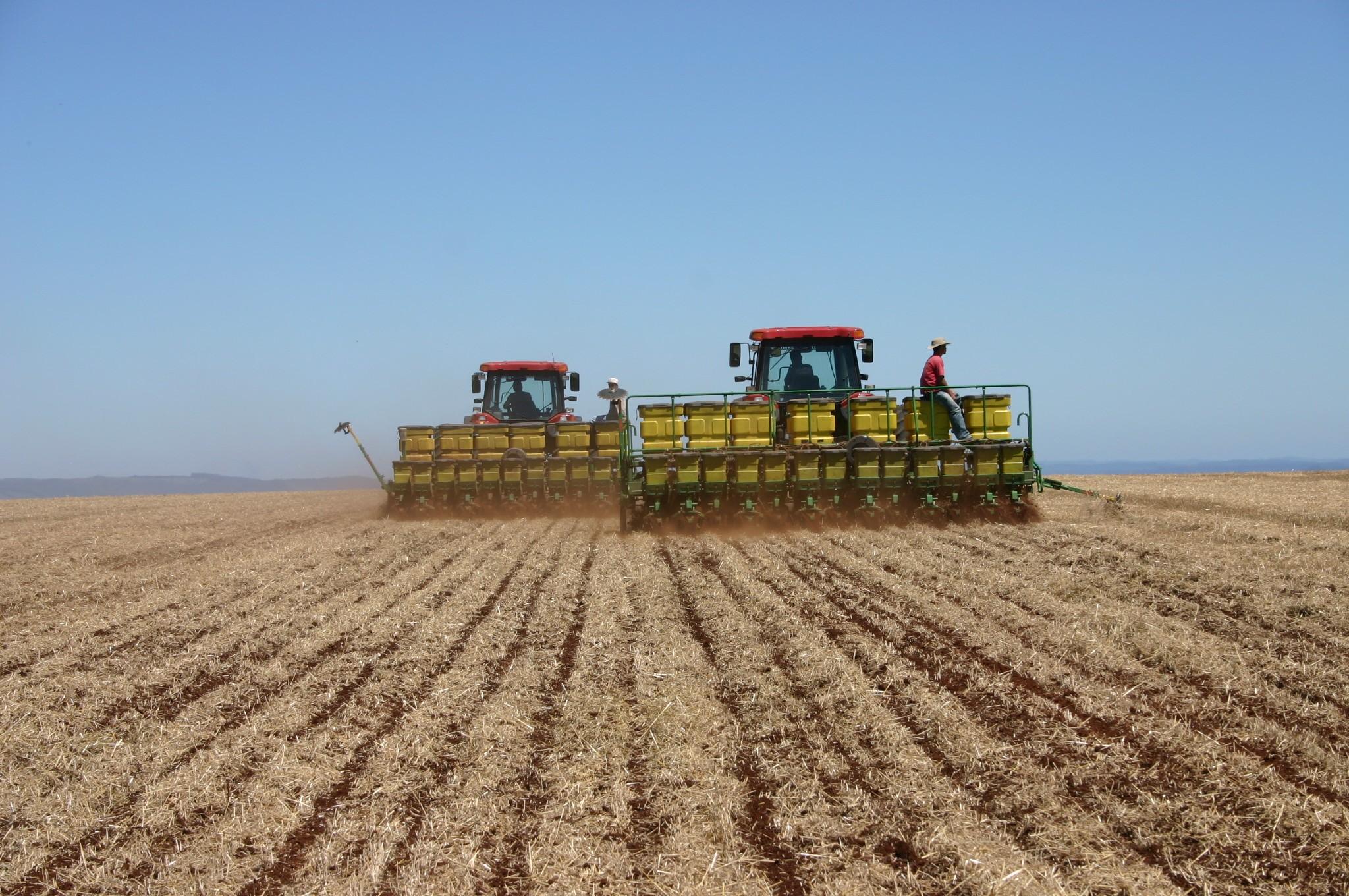 Preços agrícolas variam na região de Maringá