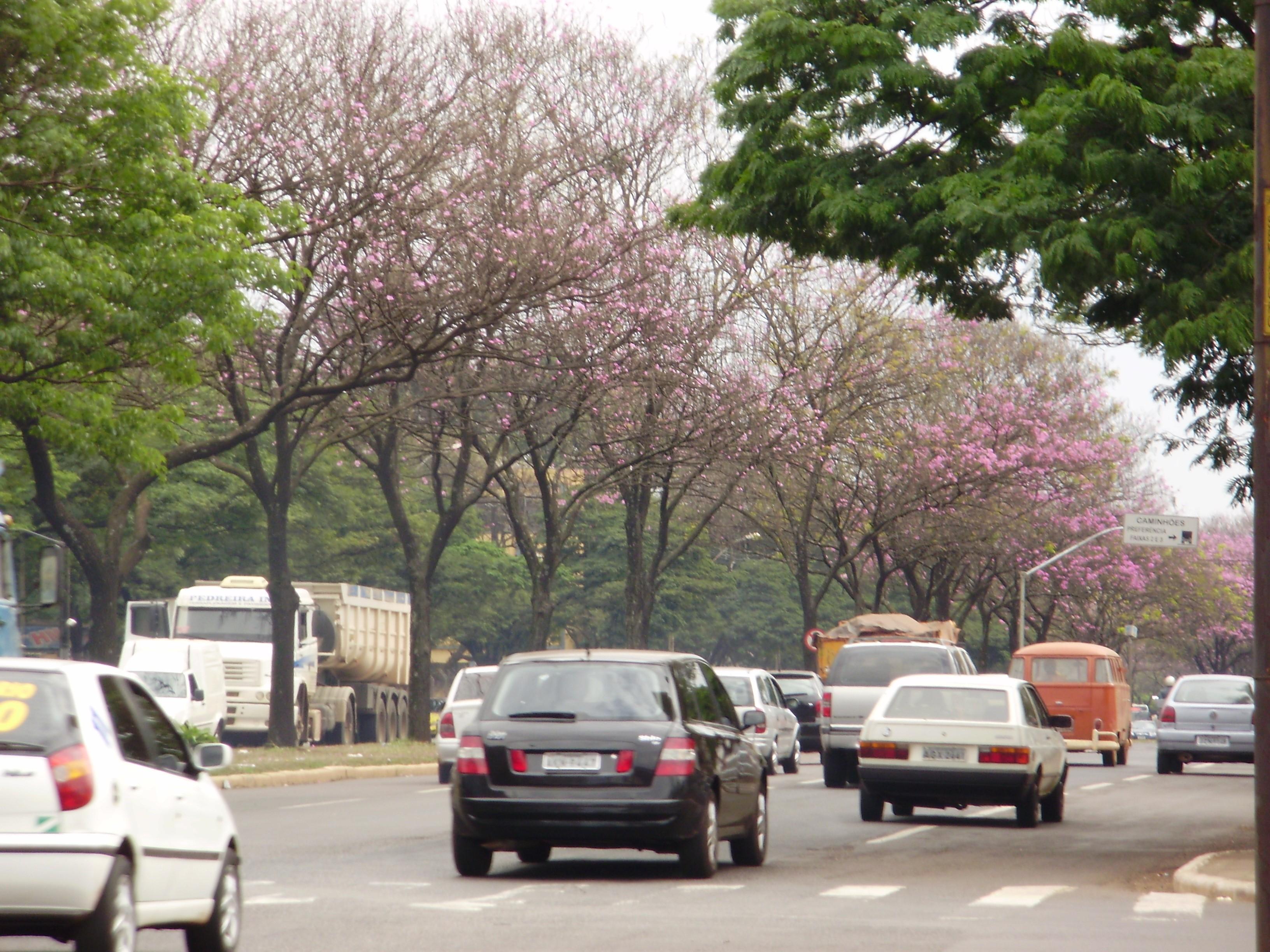 Durante tarde violenta duas pessoas morrem no trânsito de Maringá
