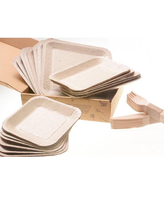 Empresa desenvolve pratos de papel que podem ser plantados após o uso