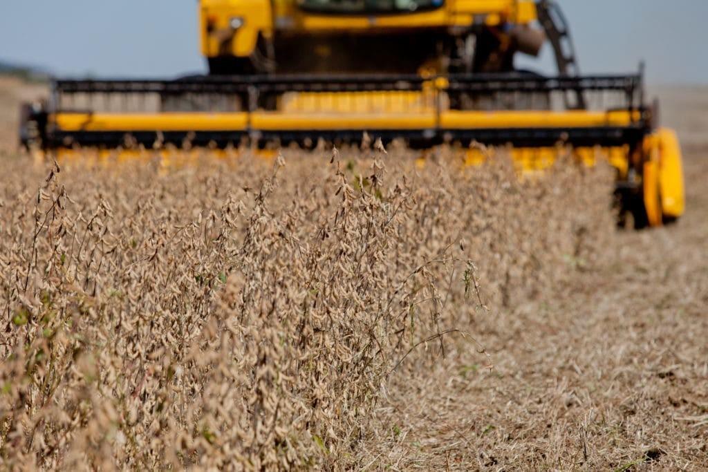 Seguro Rural atinge a marca de R$ 20 bilhões em valor segurado no ano de 2019