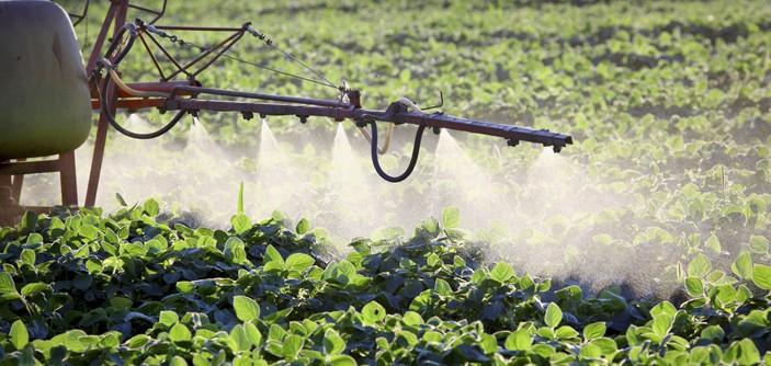 Porcentagem de agricultores que usam agrotóxicos inadequadamente é pequena