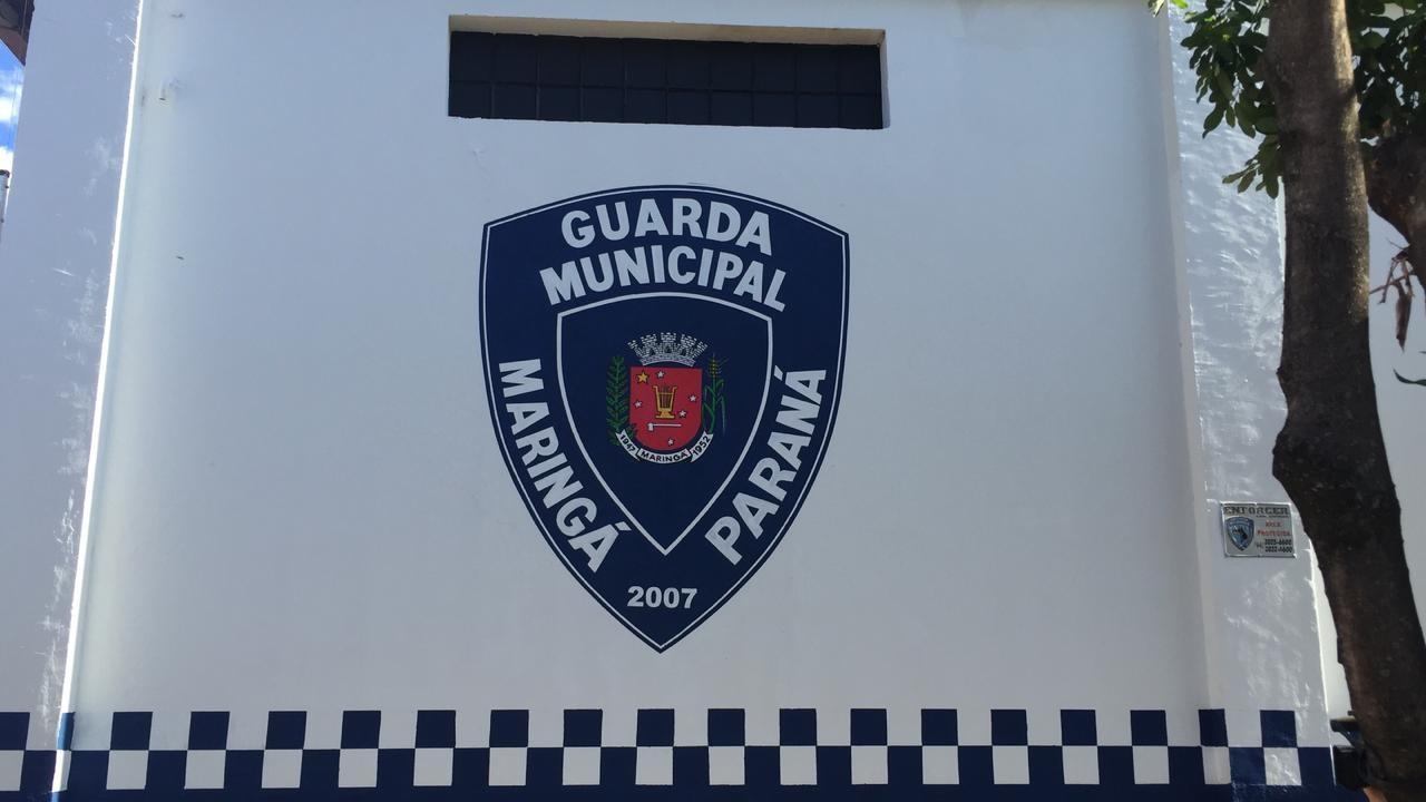 Estatuto da Guarda Municipal chega à Câmara