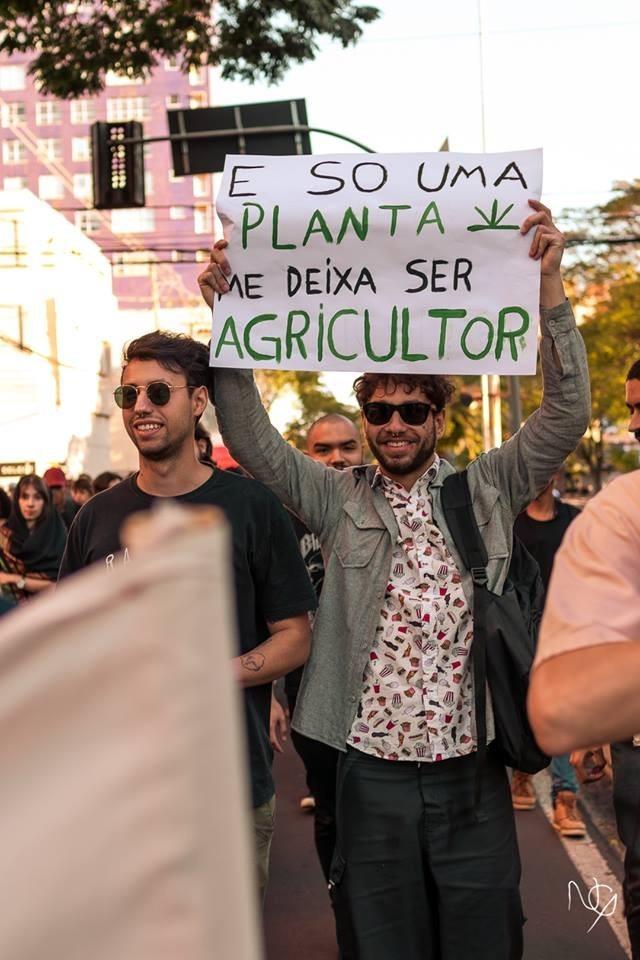Requerimento pede segurança durante a marcha da maconha