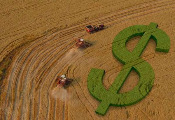Crédito rural é a demanda mais importante para o produtor