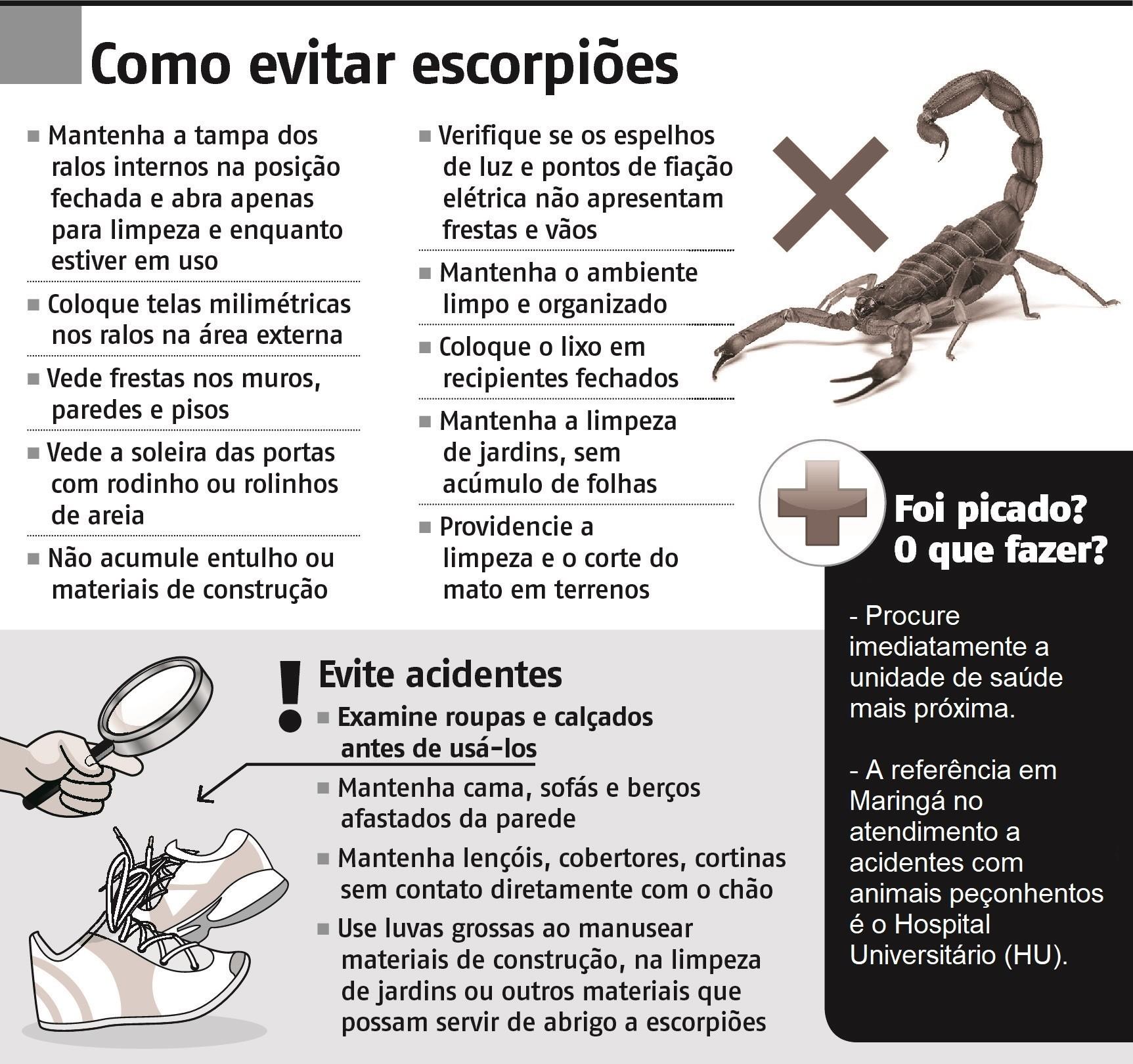 Infográfico/Folhapress