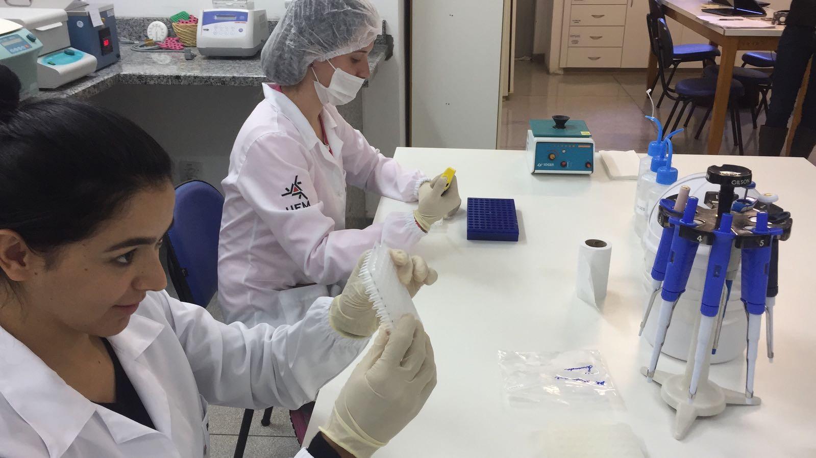 UEM desenvolve no momento 1.500 pesquisas institucionais
