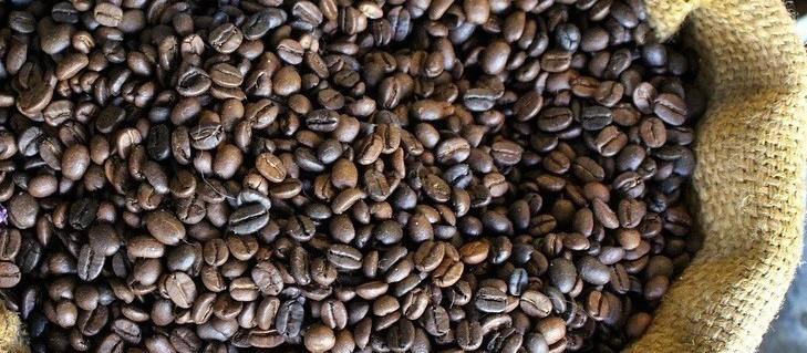 Café em coco custa R$ 5,74 kg em Londrina