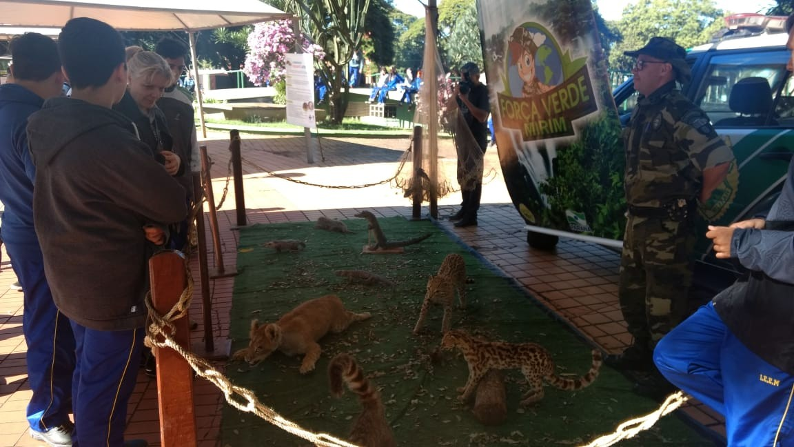 Semana do Meio Ambiente segue com várias ações em Maringá