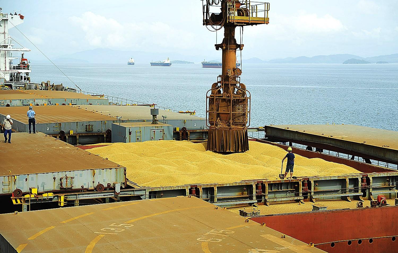 Comercialização da soja no Brasil é acelerada após período de lentidão