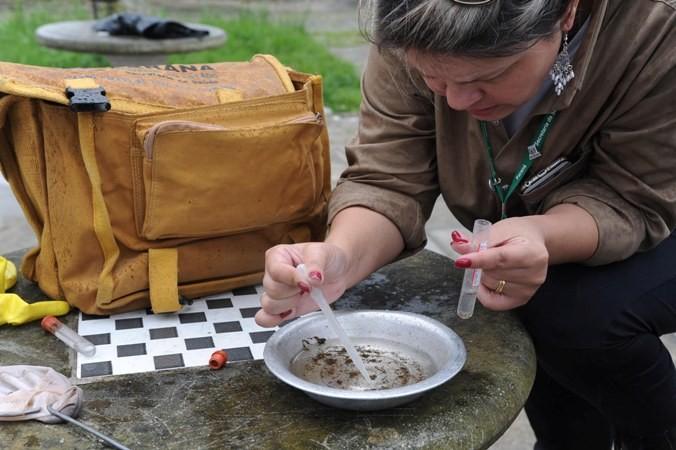 Ivatuba tem maior índice de infestação predial do Aedes aegypt no Paraná