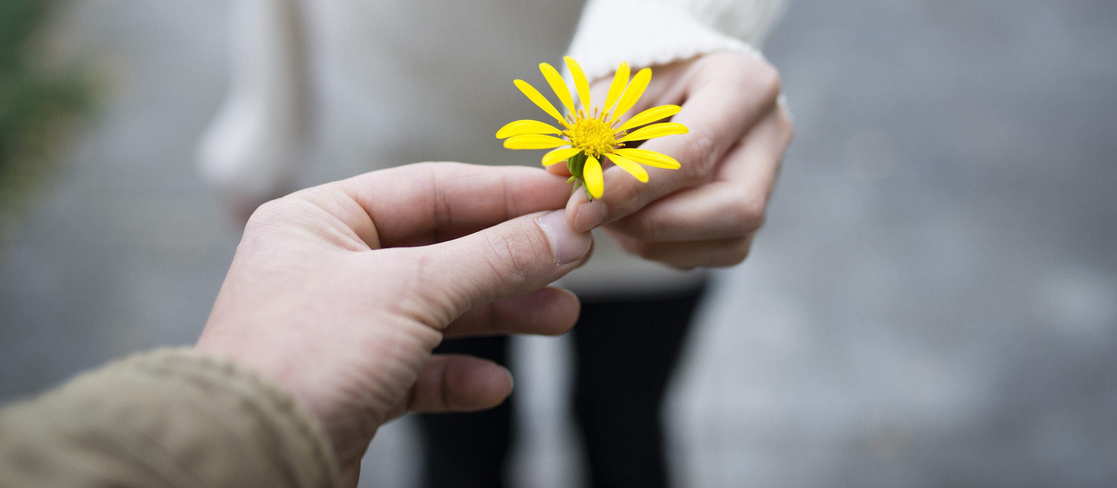 Você acredita no poder transformador da gentileza?