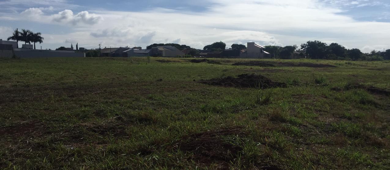 Terrenos em frente ao futuro Parque de TI estão à venda