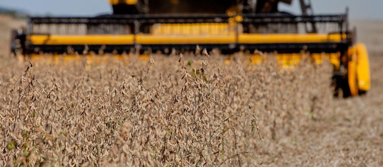 Cocamar comemora bons resultados do concurso de produtividade de soja