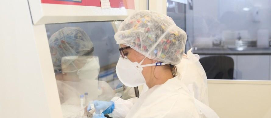 Confira o boletim sobre casos de coronavírus deste domingo (12)