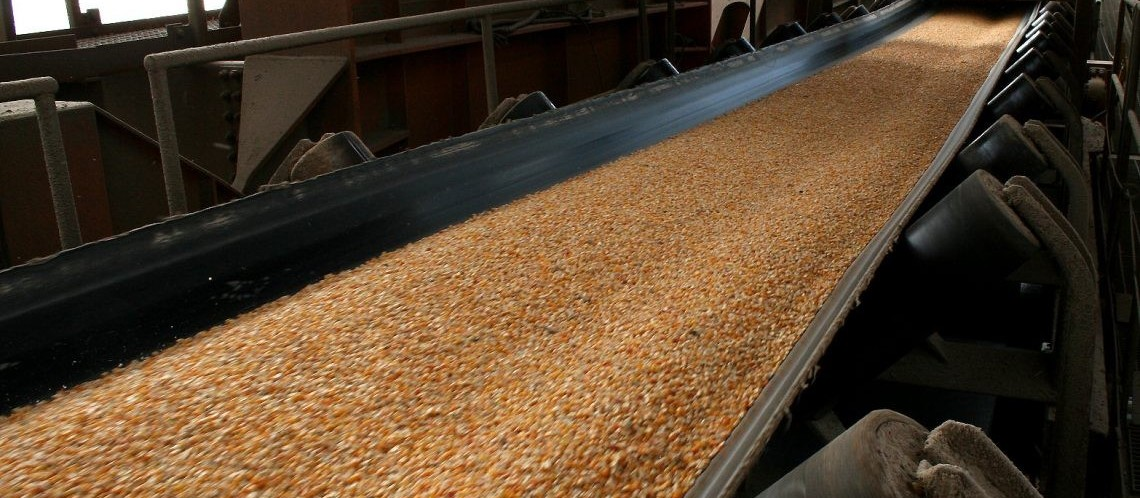 Embarques de milho em agosto poderão superar os de julho