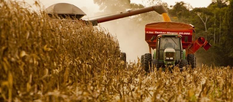 VBP da agropecuária deve encerrar o ano em R$ 609 bi, estima Ministério da Agricultura