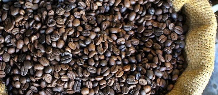 Café em coco custa R$ 5,75 kg na região de Maringá