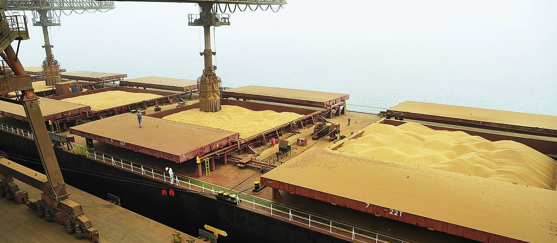 Produção de grãos deve ser de 228 milhões de toneladas