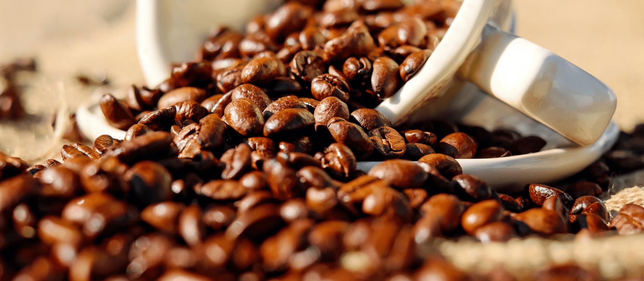 Café em coco custa R$ 6,08 o quilo na região de Apucarana