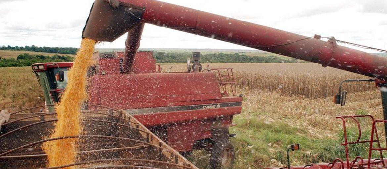 Apesar das chuvas, colheita de soja deve atingir 132,5 mi de toneladas