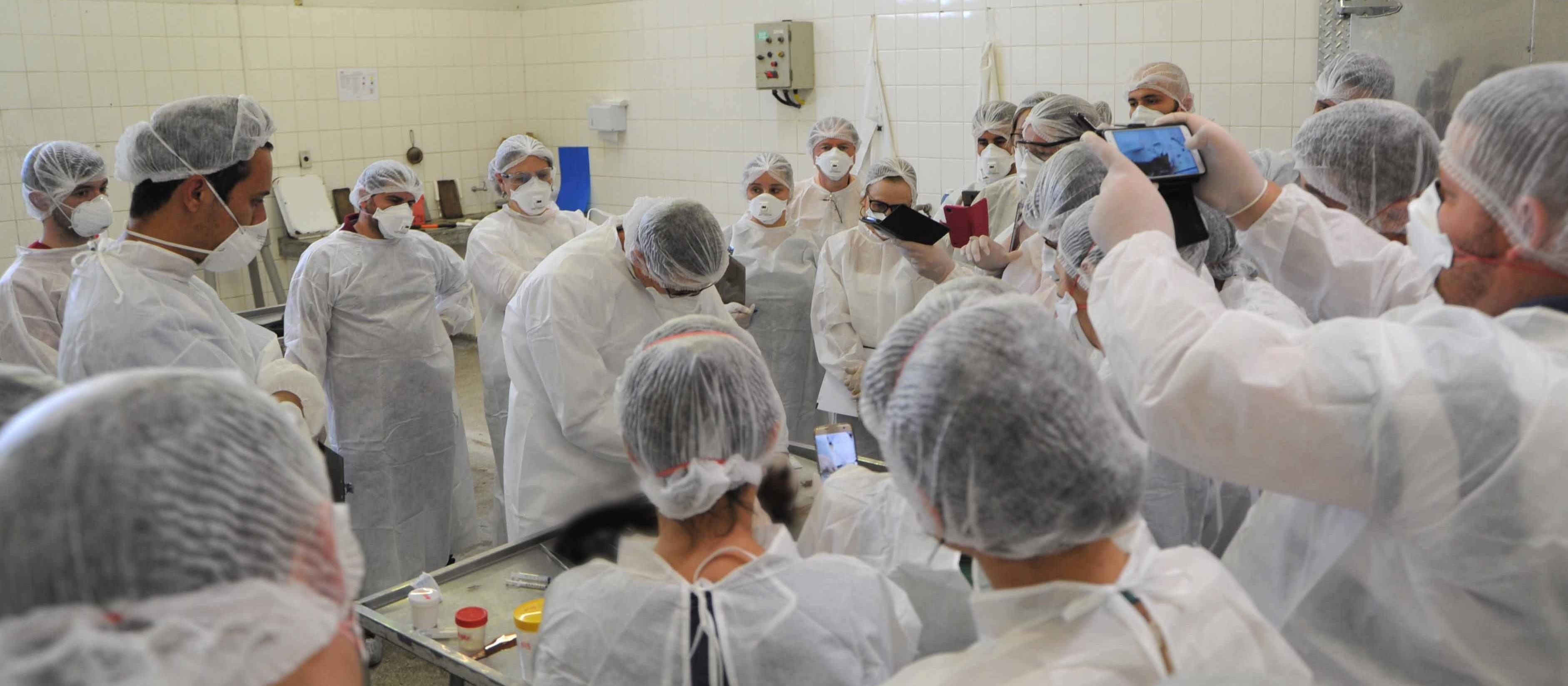 Estado capacita servidores para atuar no combate à febre amarela