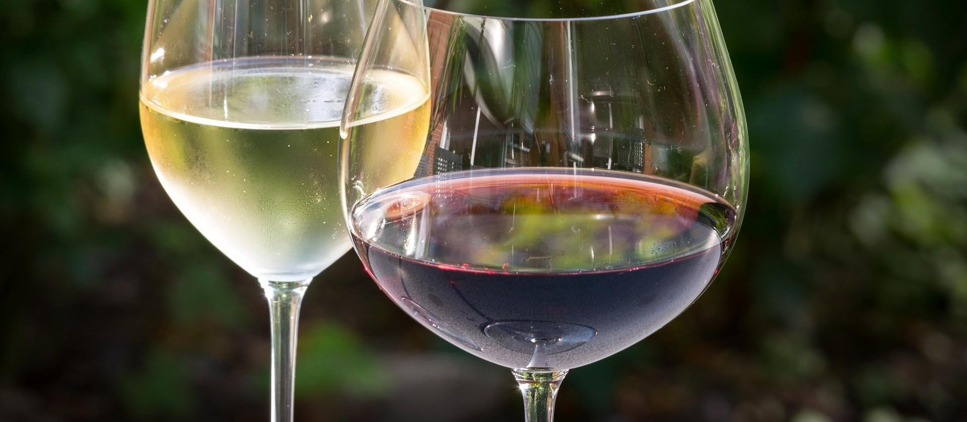 O que significa para uma marca de vinho ser premiada na GPVB?
