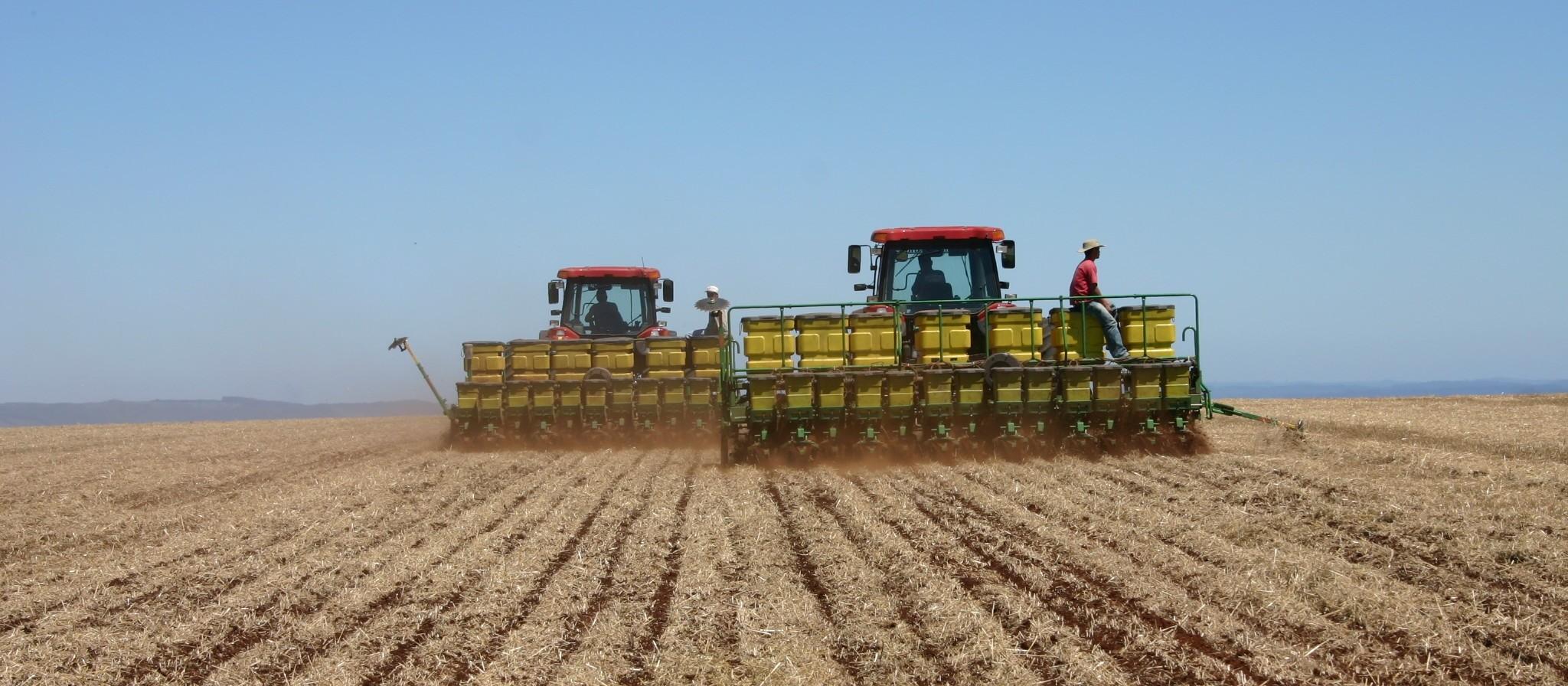 Produção de cereais em 2019 deve chegar a 228,8 milhões de toneladas