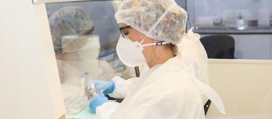 Confira o boletim de casos de coronavírus em Maringá deste domingo (28)