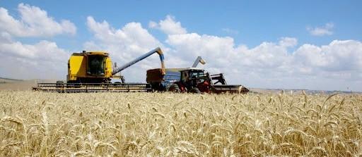 Índice de confiança do agronegócio bate recorde no terceiro trimestre
