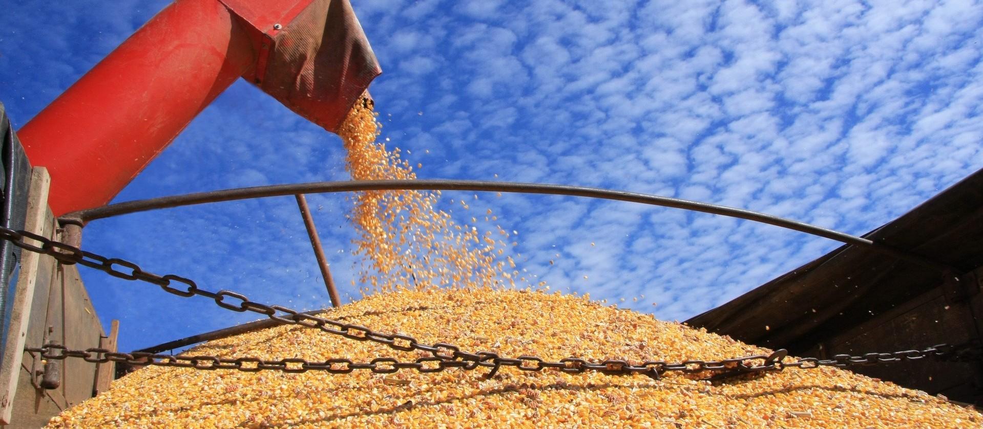 Alta nos preços melhora negociações no Paraná