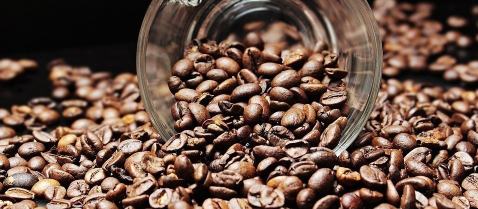 Café em coco custa R$ 6,80 kg na região de Jacarezinho