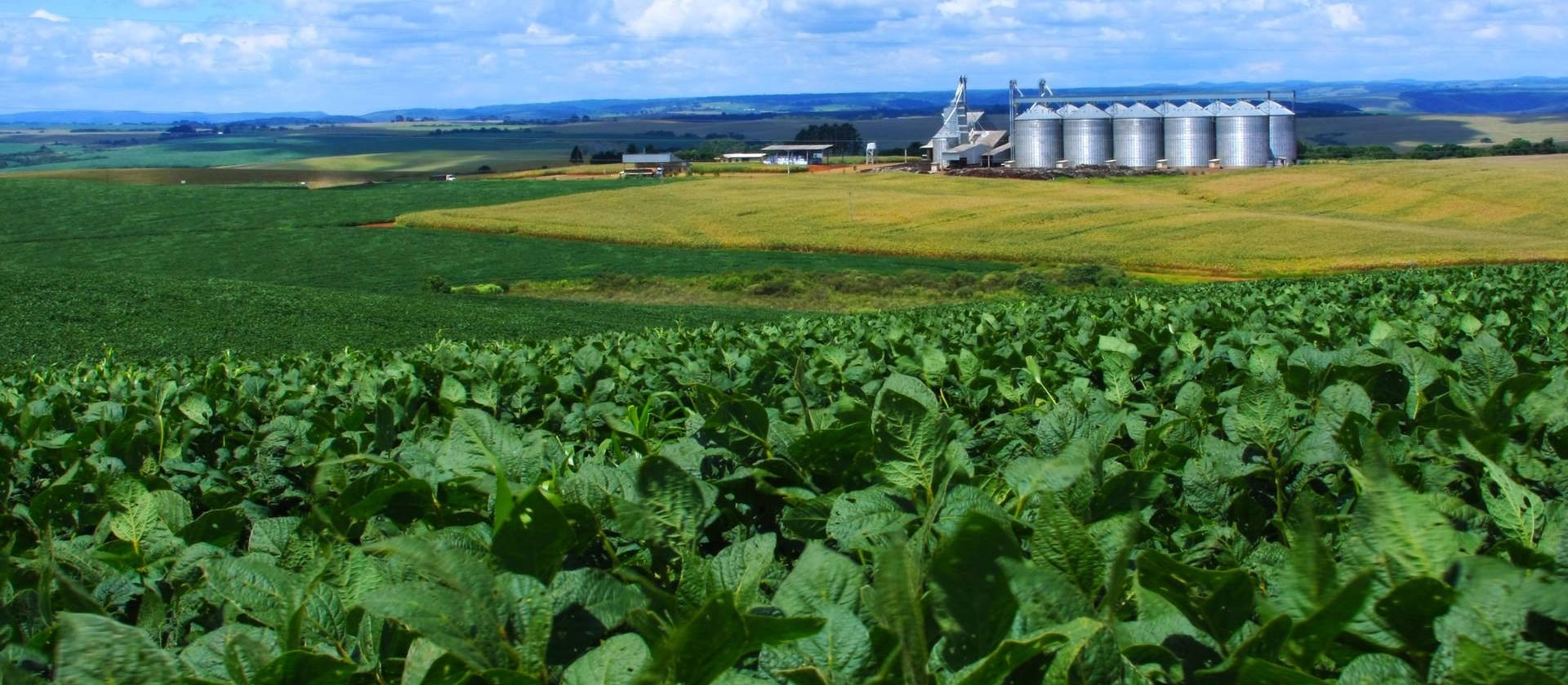 Plano Agrícola e Pecuário 2018 terá R$ 194 bi