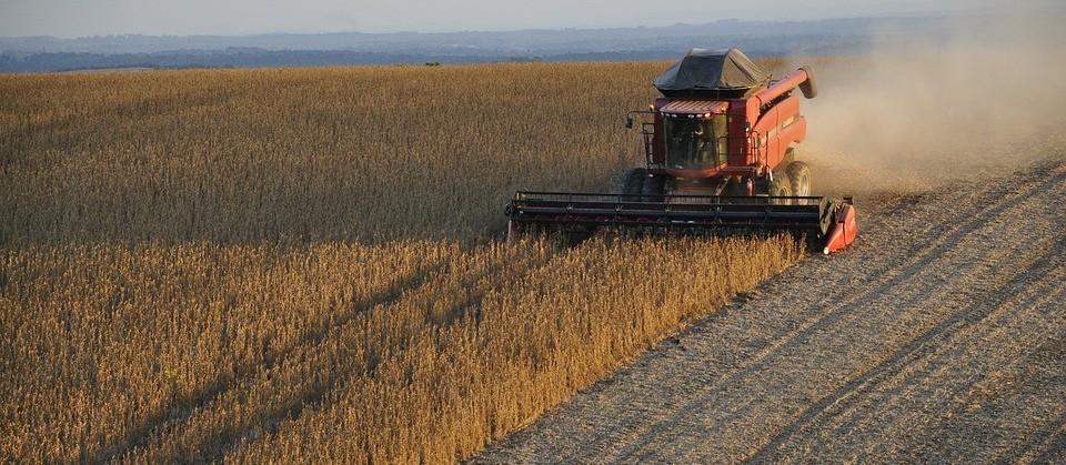 Clima está favorável para a soja mas atrapalha trabalhos no campo