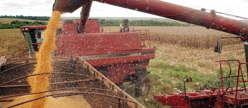 Safra de grãos de 2020 deve bater recorde e chegar a 240 milhões de toneladas