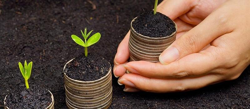Como usar a tributação para promover a economia verde?