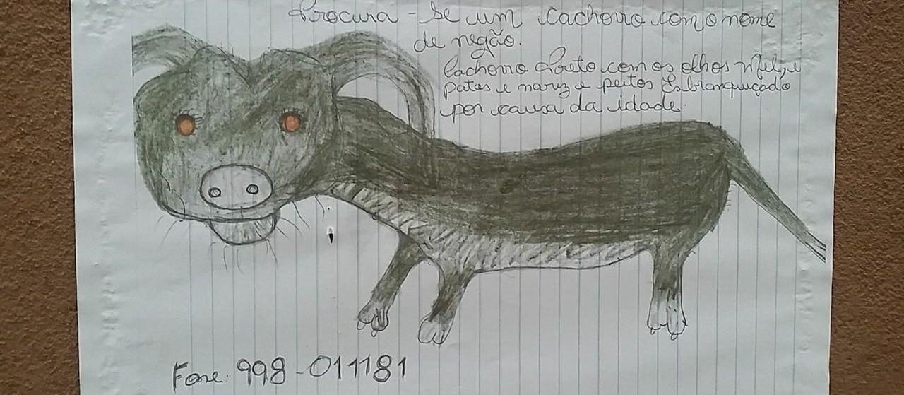 Sem foto, tutora desenha e espalha cartazes do cachorro da família