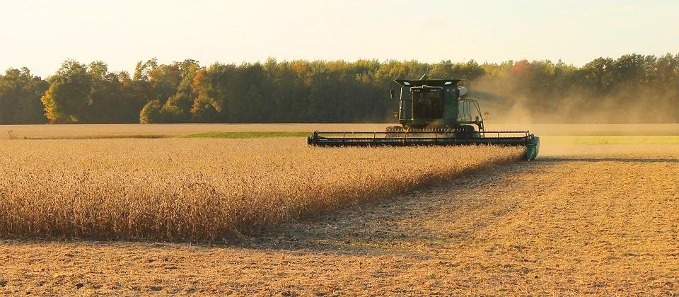 Colheita da soja ganha ritmo no Paraná