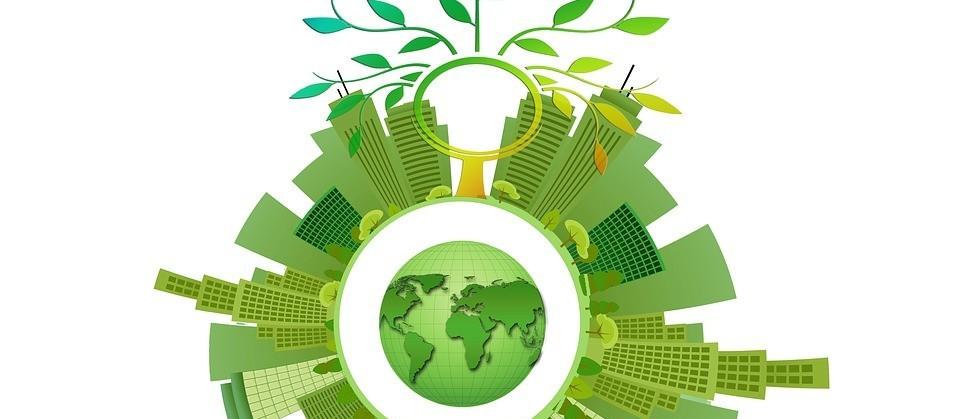 Interact-bio orienta sobre soluções baseadas na natureza