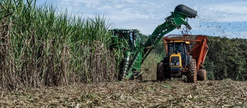 Alcopar divulga preços da cana-de-açúcar para o mês de março