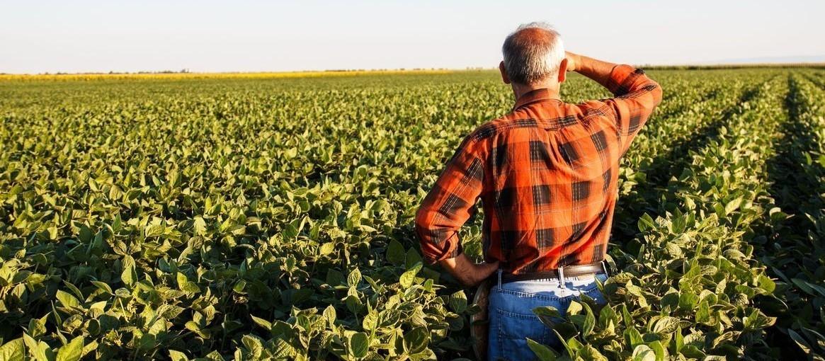 Agronegócio abre portas para profissionais, mas com qualificação e tecnologia